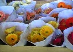 harga bunga potong segar