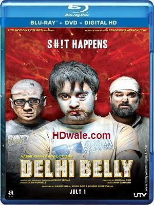 Delhi Belly full Movie Download (2011) HD 720p BluRay 700mb