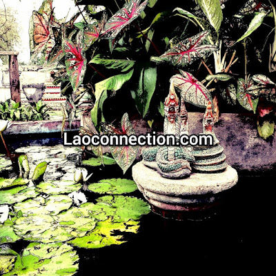 Mini nagas in a water pond garden