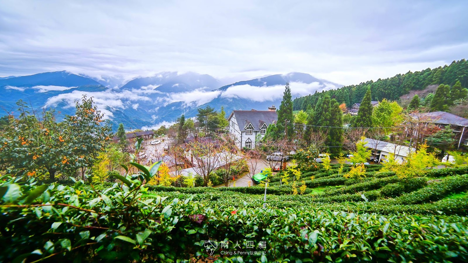 【新竹住宿】新竹山上人家森林農場 超美雲海景觀、山上歐風民宿晚餐 一泊二食