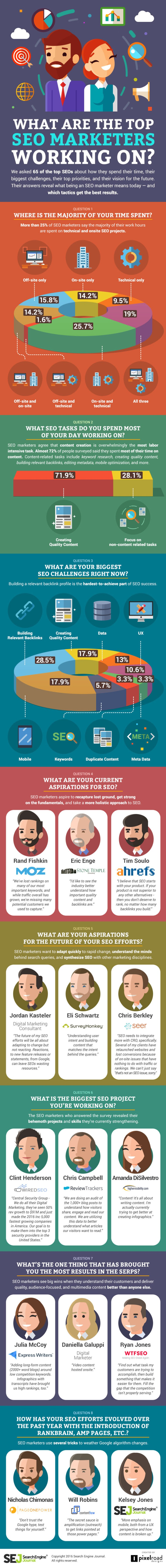 What Gets The Most Results for Top SEOs? - #Infographic