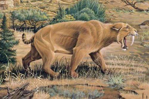 36+ Hewan yang telah punah di dunia terupdate