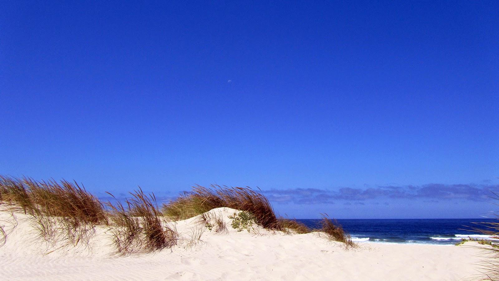 Playas Aveiro_ameiseblog