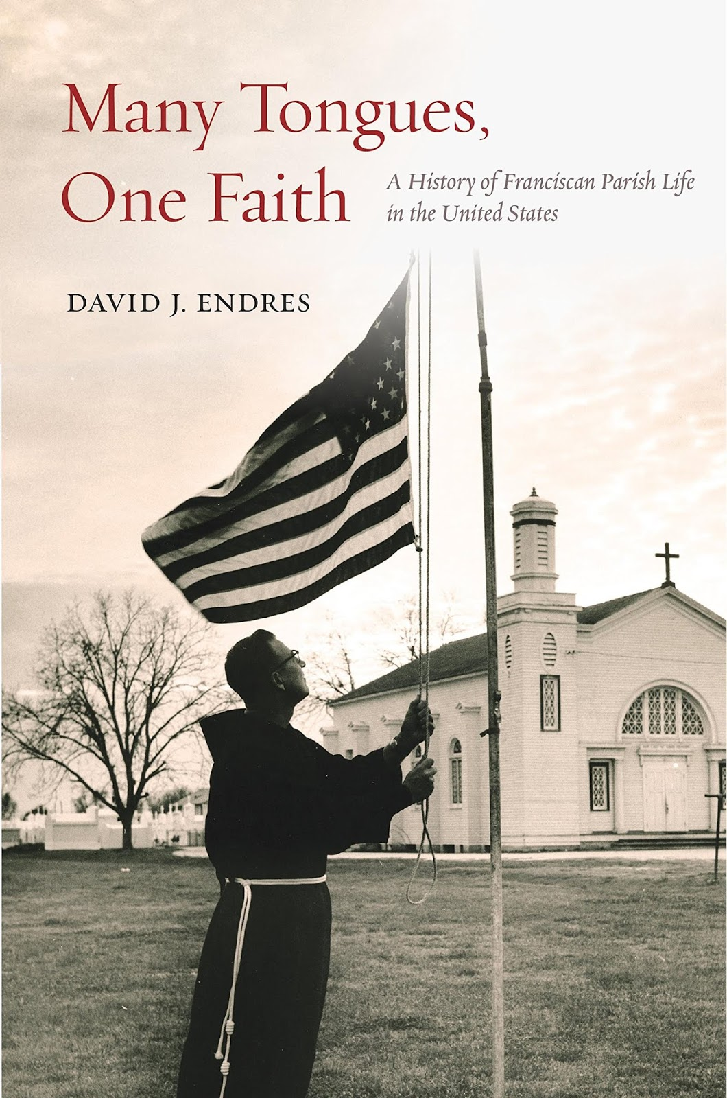 i corresponded recently with fr david endres about his new book many tonges one faith a history of franciscan parish life in the united states
