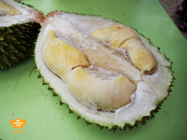 Frozen Musang King Durian Buffet at Durian Wonderland
