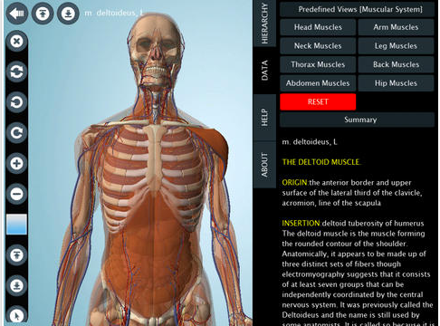 7 Wonderful iPad Apps to Learn about Human Body in 3D | Educational ...