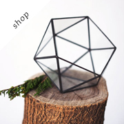 "Glass terrarium ""little icosahedron"" by boxwoodtree on Etsy"