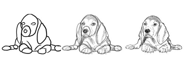 çizilmiş köpek resmi örnekleri