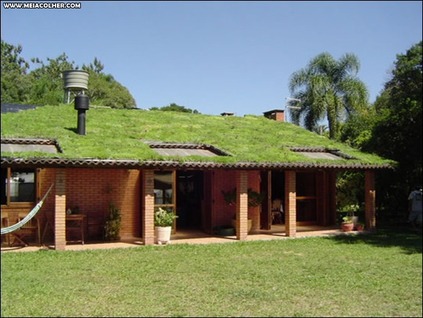 casa com grama no telhado