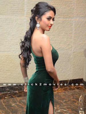 Pooja Sri Hot Back Showing Stills with Shining Dress