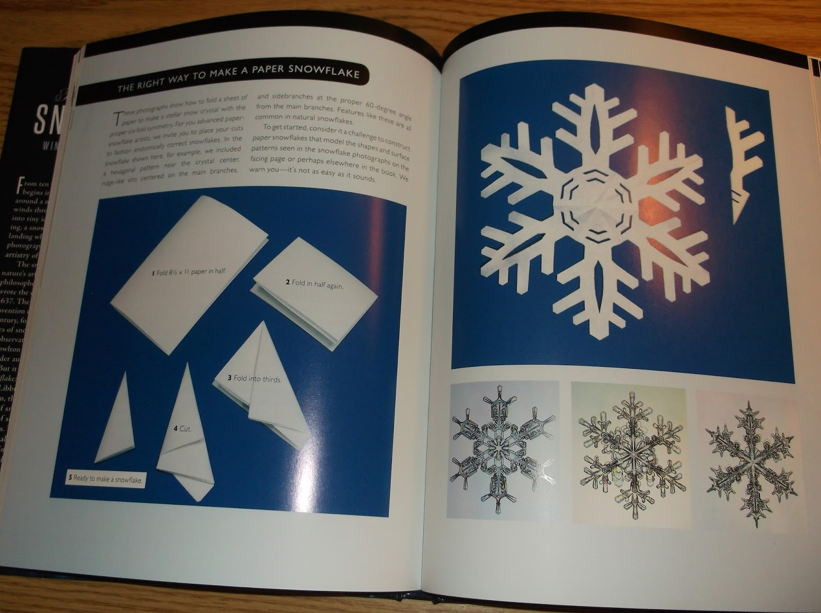 Missys Product Reviews : The Snowflake Winter's Frozen