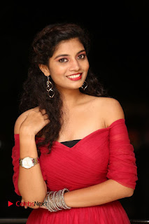 Actress Bindu Pictures in Red Dress at Attarillu Movie Press Meet 0015.JPG