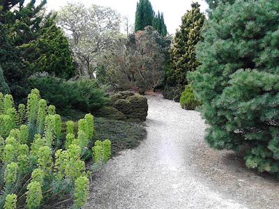 The gravel garden Improve your garden Hillier Gardens Green Fingered Blog