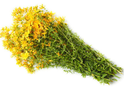 St. John's wort is used as a tincture in the treatment of the following conditions: - Acute and chronic hepatitis - Chronic inflammation of the colon - A stomach ulcer
