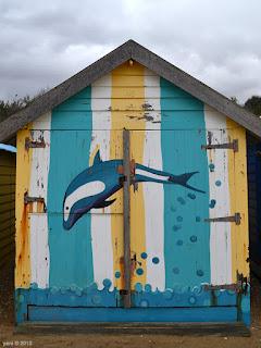 dolphin 48