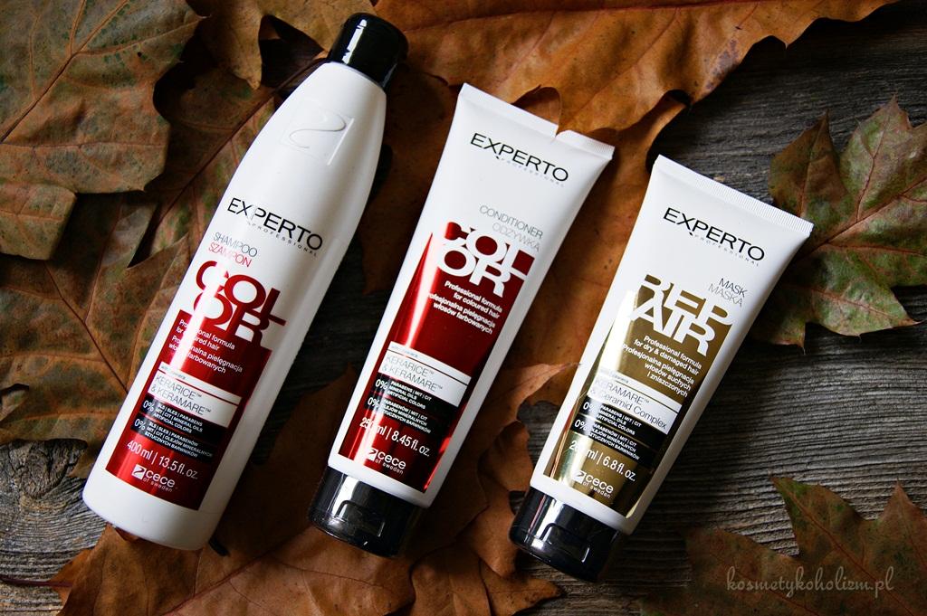 Jak ważna jest odpowiednia pielęgnacja włosów farbowanych - Cece of Sweden Experto Color oraz Repair