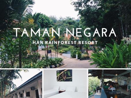 Han Rainforest Resort : Pilihan terbaik saat ke Taman Negara, Pahang!