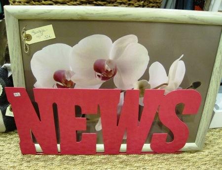 Bandeja cojín y revistero news