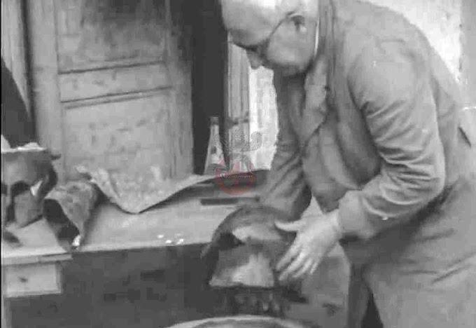 Ολυμπία: Η αρχαιολογική ομάδα, του καθηγητή Εμμανουήλ Κούντζ, πρόσφατα αποκάλυψε πολλά σημαντικά ευρήματα ...ΒΙΝΤΕΟ 1960
