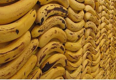 هام وخطير أحد أنواع الموز ينتشر في الأسواق ويسبب مرض خطير لمن يأكله تعرف على هذا النوع وتجنبه فوراً