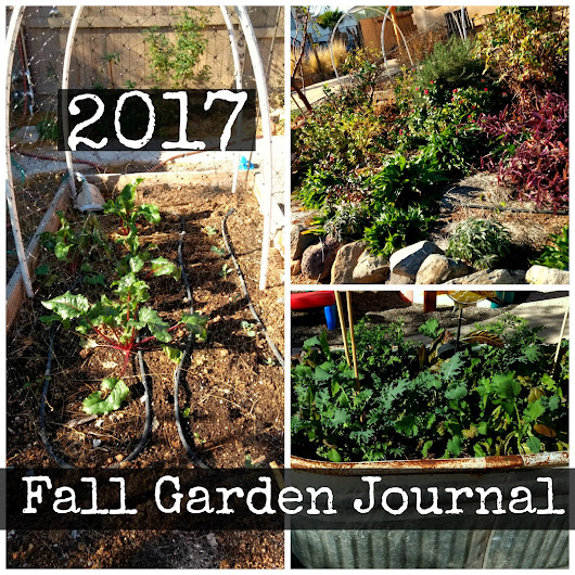 Fall Garden Journal 2017