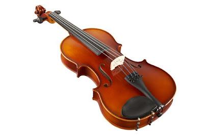 dan violin