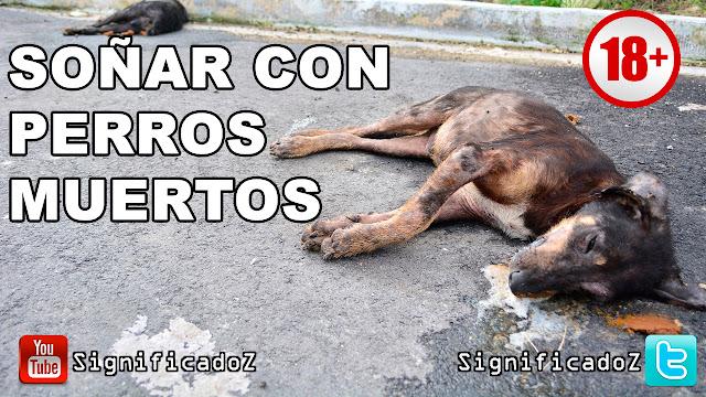 Soñar con Perros Muertos ¿Que Significa?