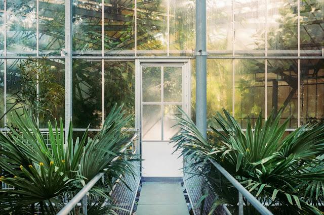 Ogród zimowy- miejsce do spędzania czasu zimą