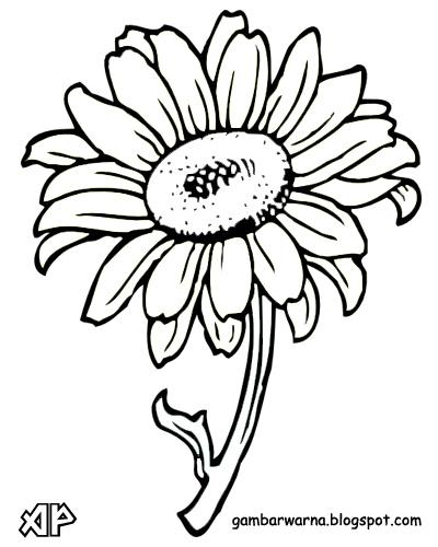 Kaligrafi Bunga Matahari Nusagates