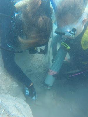 Νέα δεδομένα και ευρήματα γύρω από το σπήλαιο Φράγχθι
