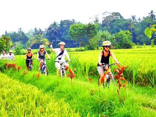 bali bike tours tur sepeda