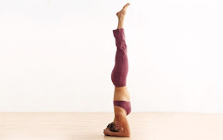 Sirsasana is the king of all the asanas (pose) due to its various medical advantages.