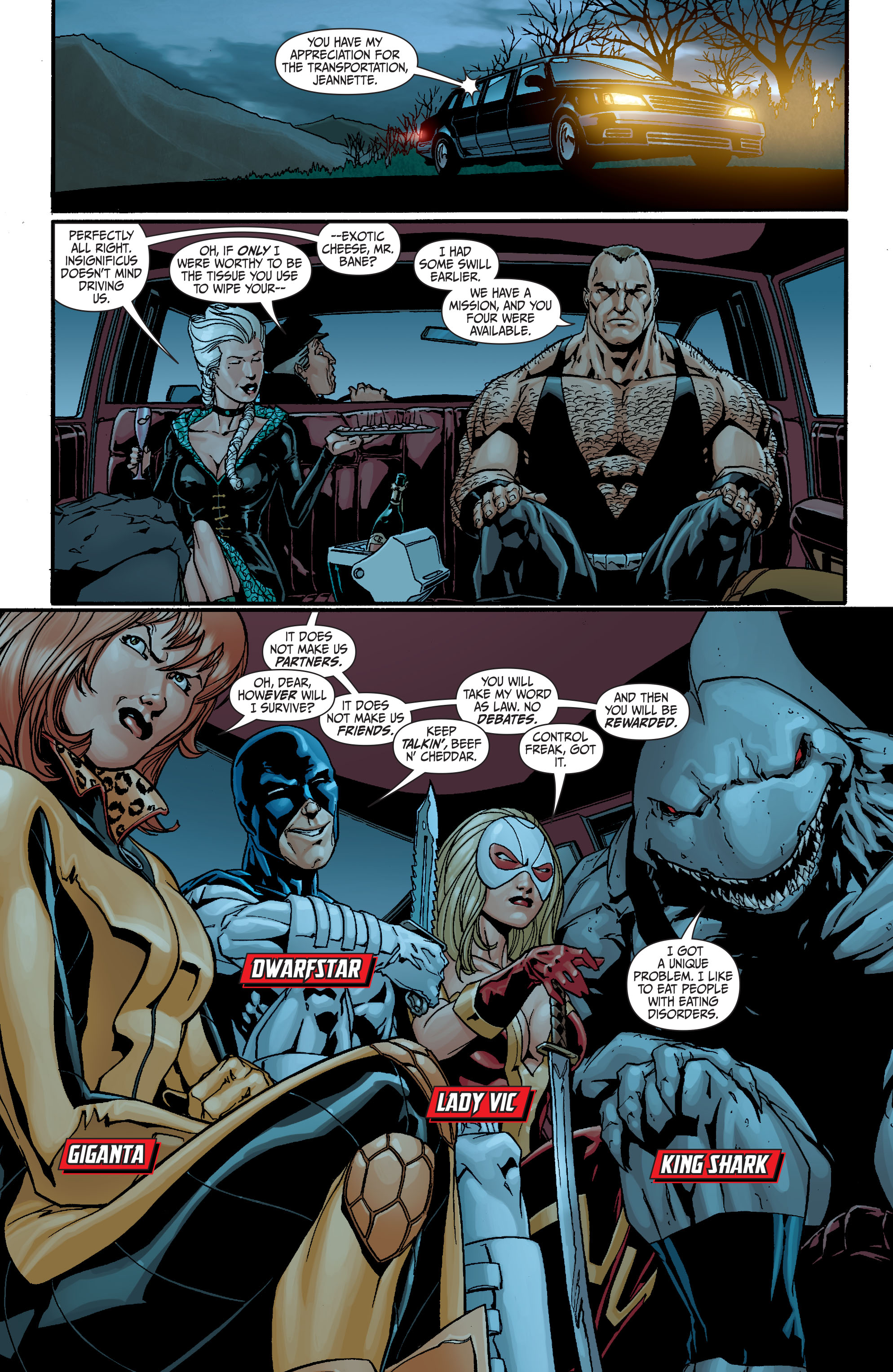 Read online Secret Six (2008) comic -  Issue #21 - 12