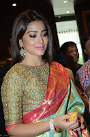 Shriya Saran Looks Stunning in Silk Saree at VRK Silk Showroom Launch Secundrabad ~  Exclusive 183.JPG