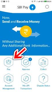 send upi payment