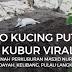 Video Kucing Putih Di Kubur Viral