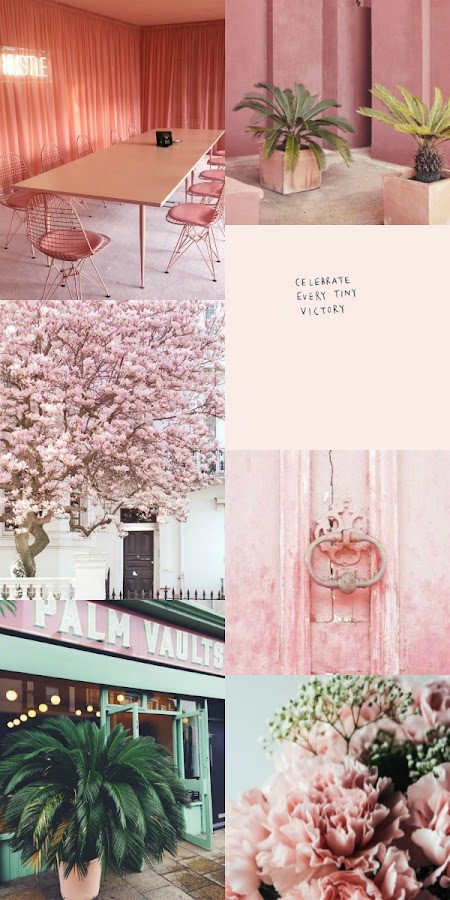 collage, rosa, pink, hues, color, flowers