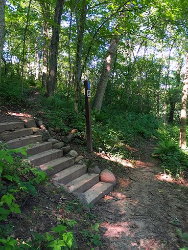 Ice Age Trail Springfield Hill Segment - Disperse Camping Area
