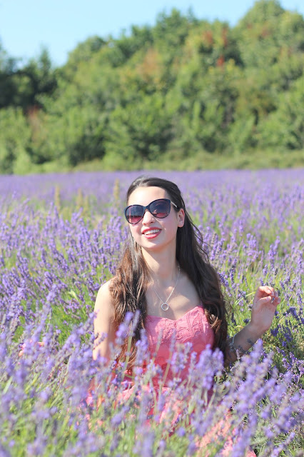 Lavender fields fashion blogger