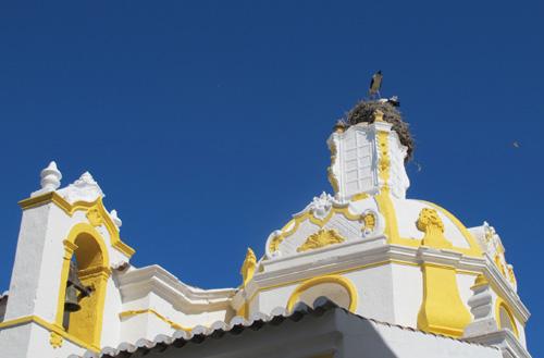 Storks in Faro.