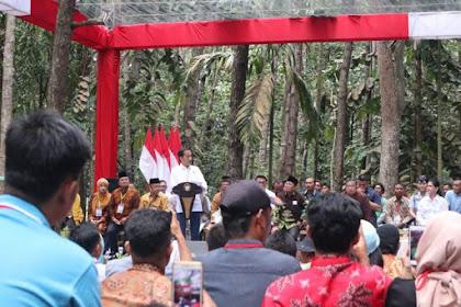 Elektabilitas di Sumatera Turun, Jokowi Salahkan Harga Karet dan Kelapa Sawit Anjlok