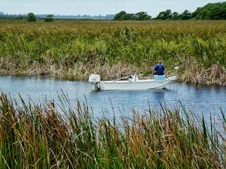 Pescando en el canal