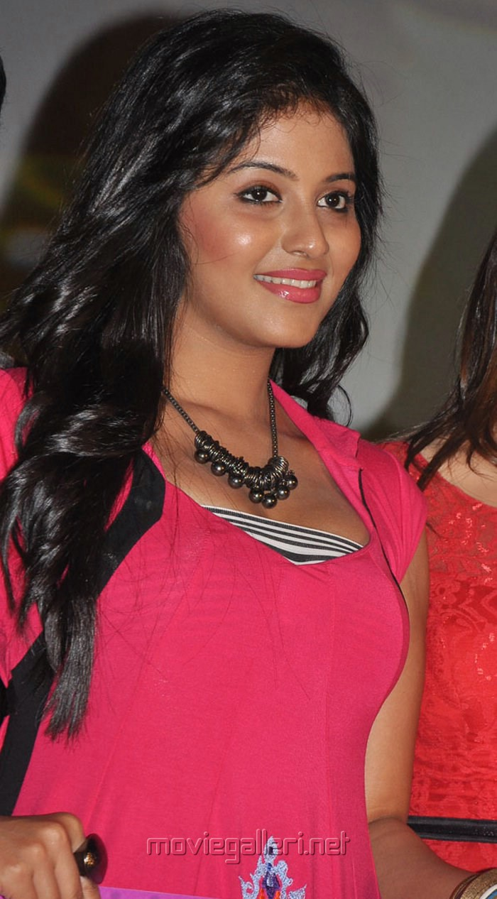 Anjali Hot Images At Settai Audio Launch  Bollywood Hot -9193