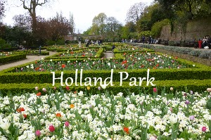 Holland Park  A Mum in London