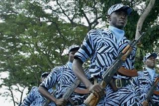Seragam Zebra Militer Pantai Gading