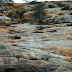 Spot the Leopard lurking among these rocks