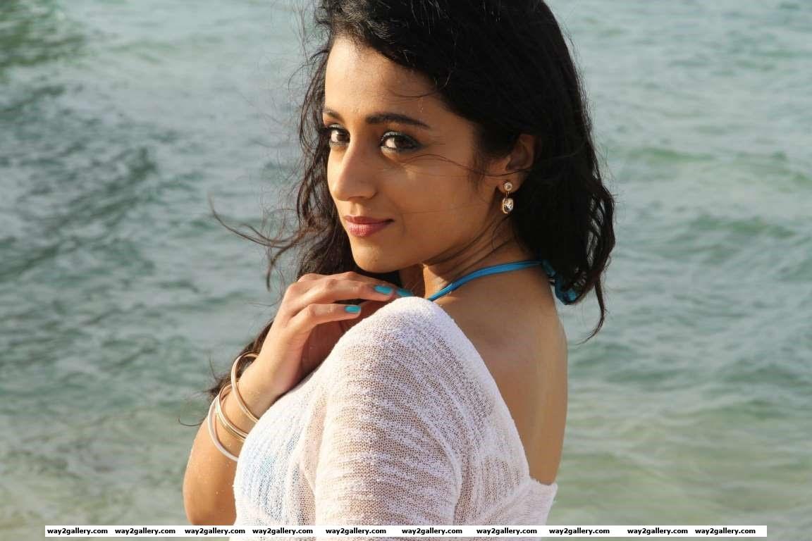 The lovely and talented actress is best known for her superb performances in films like Varsham Ghilli Nuvvostanante Nenoddantana Unakkum Enakkum Abhiyum Naanum and Vinnaithaandi Varuvaayaa