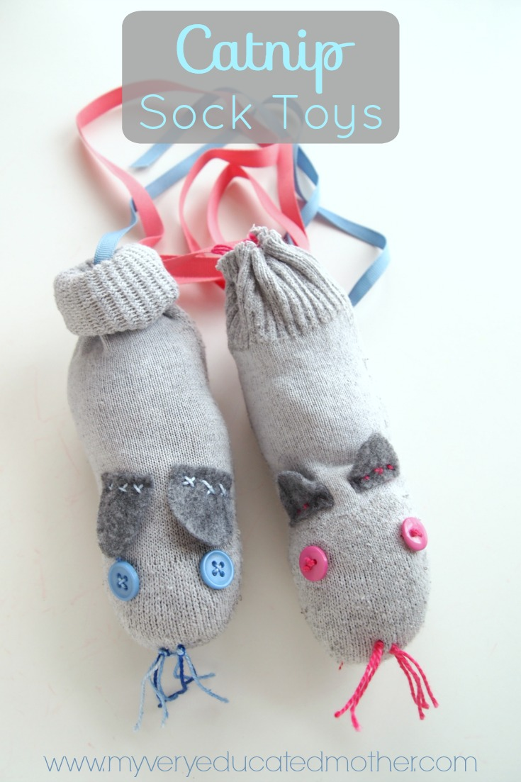 You'll never believe how easy it is to make these catnip socks, I had no idea you could get catnip at Walmart!