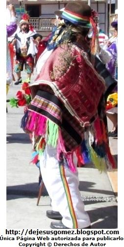 Boliviano o Jamille de perfil (Tunantada). Foto del Boliviano o Jamille tomada por Jesus Gómez