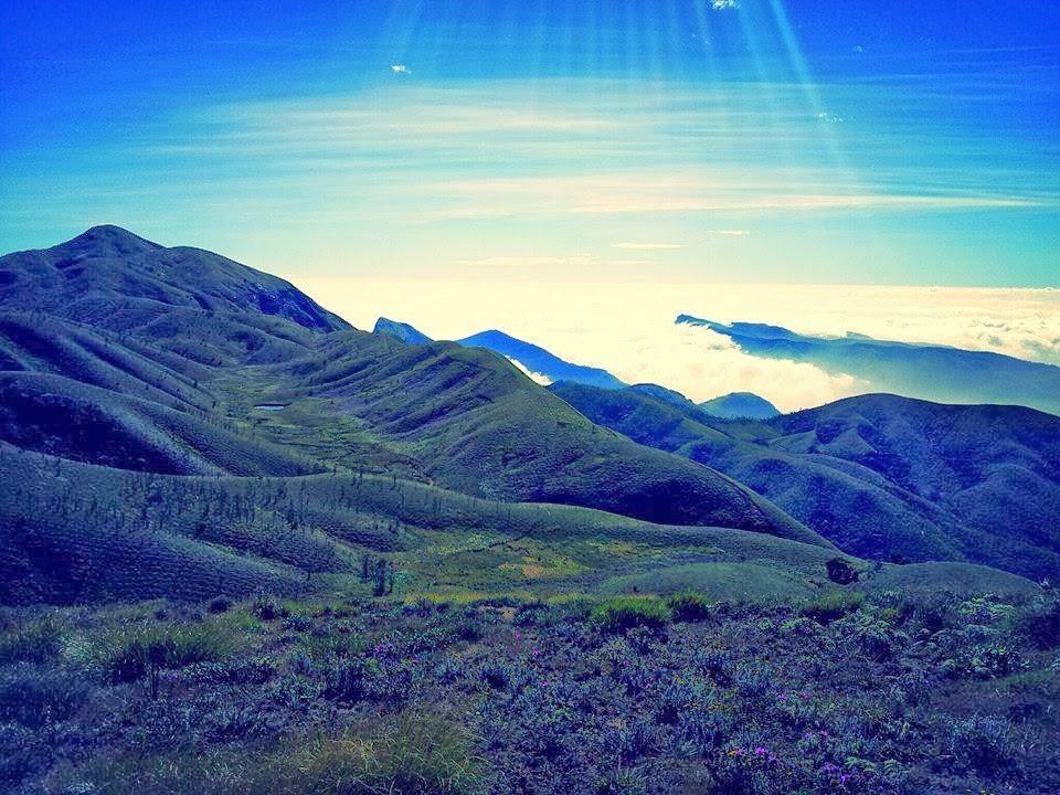 meesapulimala trek, meesapulimala trek route, Trekking to Meesapulimala, trekking in meesapilimala